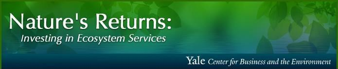 Yale Center for Business and the Environment Webinar – Tuesday, February 5th